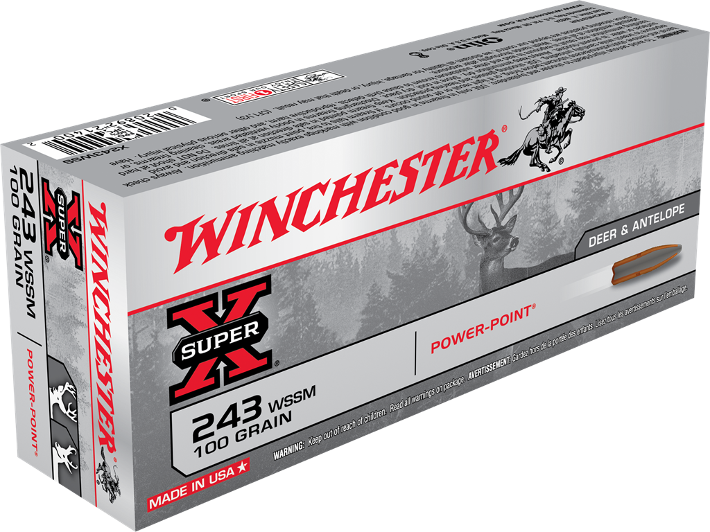 243 Win. Winchester Power Point 6,5 g